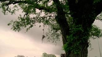True Detective – Saison 1 – Episode 5 Extrait (2) VO