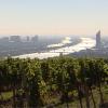 Erlebnis Österreich: Zwischen Wein und Wasser: Das Kahlenbergerdorf in Wien