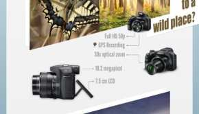 Infografica Fotocamere Digitali