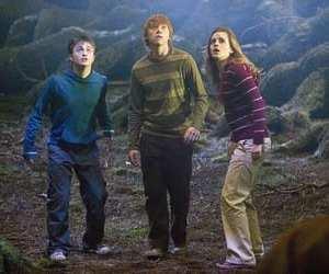 Harry Potter e l\'Ordine della Fenice - David Yates