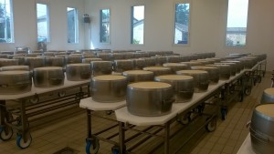 Produzione del Parmigiano Reggiano: fasciatura per forma definitiva