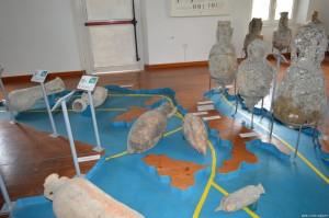 San Benedetto del Tronto, anfore antiche ritrovate dai pescatori