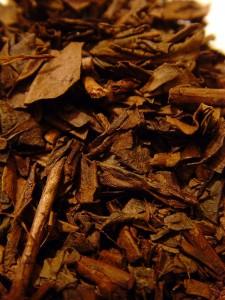 Tè giapponese Hojicha
