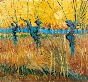 Salici potati al tramonto (1888) di Vincent Van Gogh