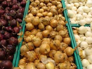 Cipolla, tre differenti varietà (fonte foto wikipedia)