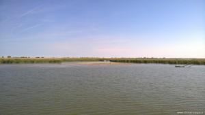 Parco del Delta del Po vicino allo sbocco in mare, ramo principale