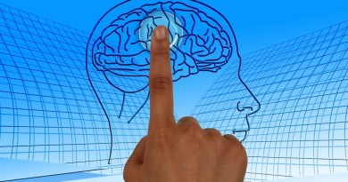 Invecchiamento del cervello è evitabile e reversibile