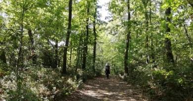 Trekking toscani
