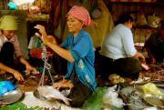 Venditrice di pesce