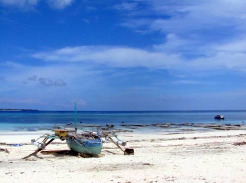 Sulawesi e Bali 2013
