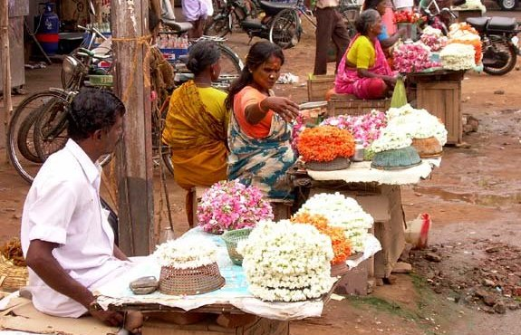 India del Sud 2007