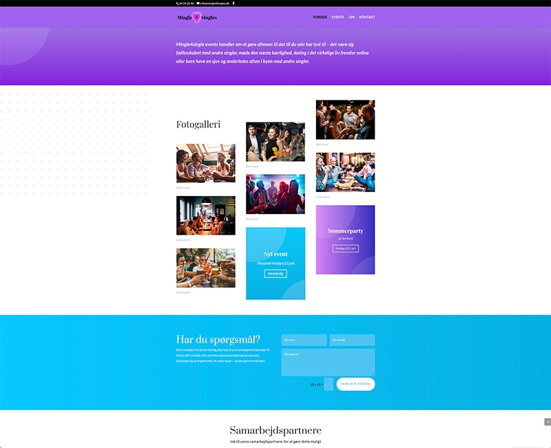 Web design af galleri