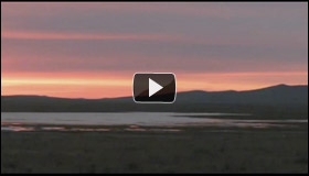 Video: Looking Out on My Homeland