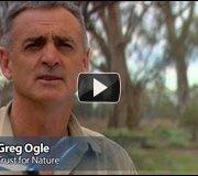 Video: Greg Ogle Illustrates Murray's Failing Circulatory System