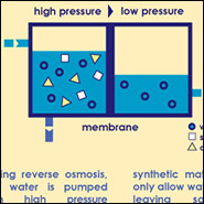 Reverse osmosis desalination process. Infographic by Hannah Nester/Circle of Blue.