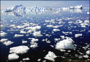 Disappearing Arctic Summer Ice
