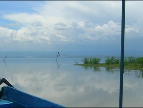 A view of Lake Naivasha from inside a tour boat
