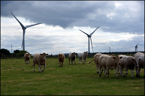 Scotland Renewable Energy