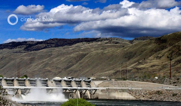 columbia river rocky reach dam spilling water dissolved oxygen fish