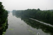 eutrophication Choke Point China Water Pollution agriculture fertilizer runoff algae irrigation canal