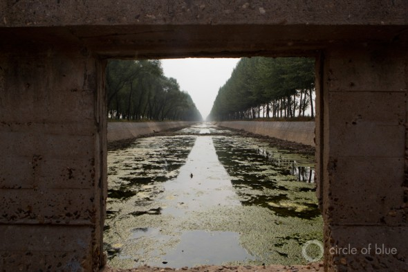 fertilizer agricultural runoff water contamination algae irrigation canal liaoning china