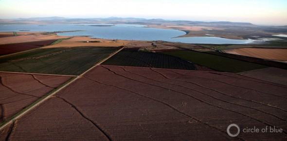 Australia agriculture New South Wales food farming