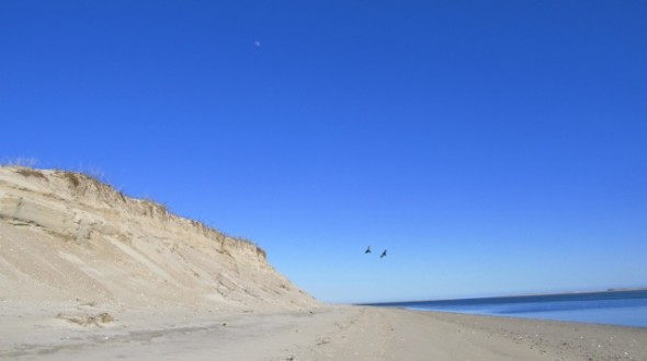 most beautiful country United States US nature Cape Cod shoreline Earth Day Chatham Massachusetts