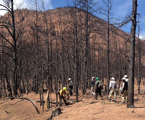 water wildfire Waldo Canyon Colorado watershed restoration
