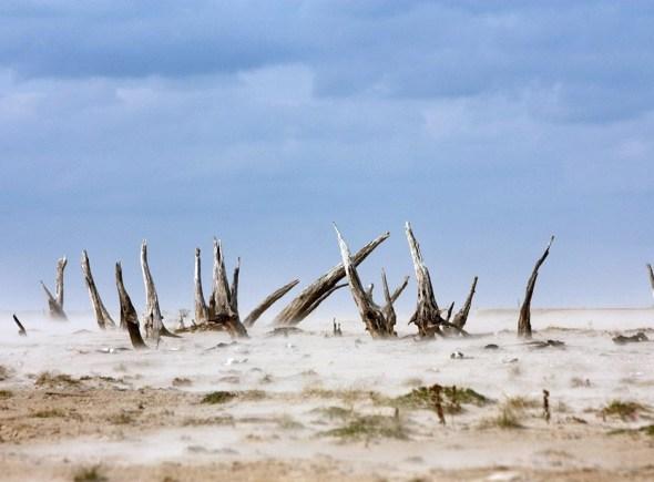 Texas drought 2011 Lake Whitney