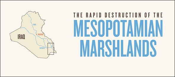 The Rapid Destruction of the Mesopotamian Marshlands