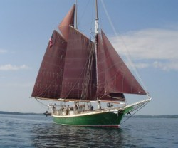 Inland Seas, based out of the Grand Traverse Bay, is a 77-foot schoolship that is modeled after Pete Seeger's educational program aboard the Clearwater sloop on the Hudson River. ISEA offers hands-on science education experiences, as well as maritime history and overnight astronomy sails on the Great Lakes.