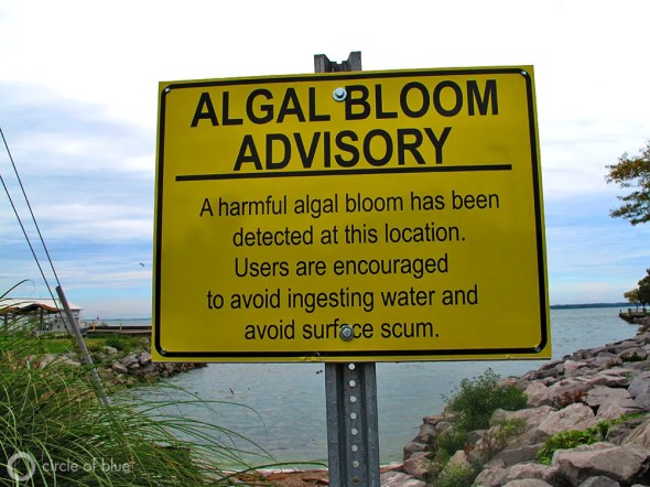 Lake Erie harmful algae bloom advisory sign