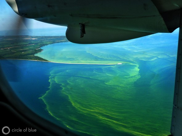 Pelee Island Ontario Canada drinking water algae Lake Erie