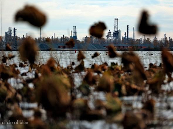 Lake Erie harmful algae bloom Toledo