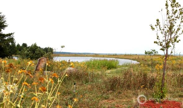 L'Anse, Michigan, Great Lakes Restoration Initiative, native plants, Lake Superior, copper mining, U.P., stamp sands, restoration, Keweenaw Bay Indian Community, Great Lakes, mine pollution