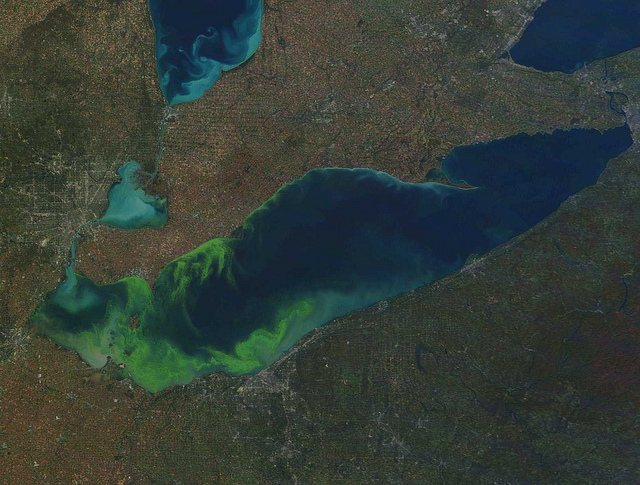 lake erie case study eutrophication and dead zones