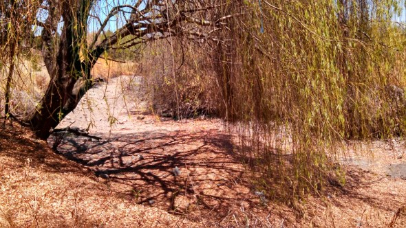 California drought Santa Clara Valley Water District Guadalupe River