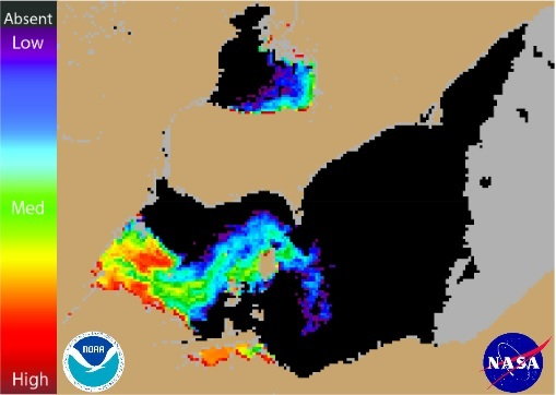 Lake Erie harmful algae bloom August 4