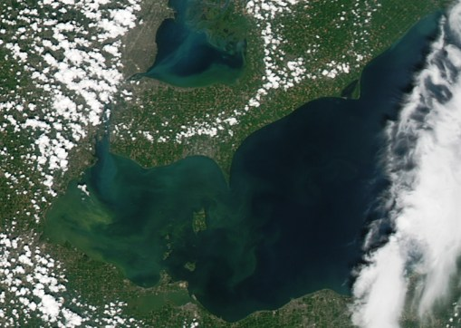 Lake Erie harmful algae bloom August 3
