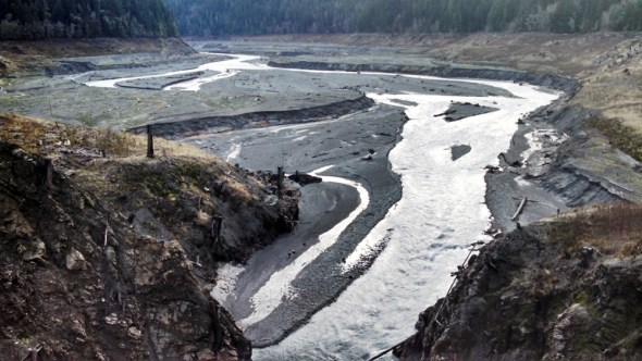 Elwha River Glines Canyon Dam American Rivers dam removal river restoration