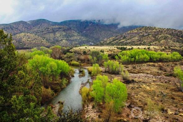 Gila River New Mexico cottonwood riparian floodplain Gila National Forest