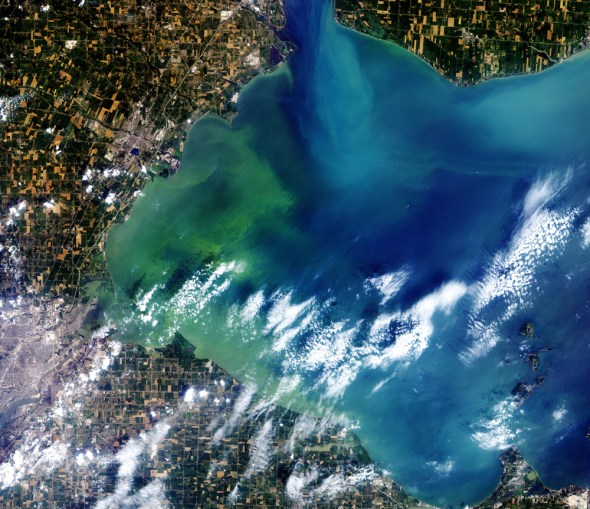 Lake Erie nutrient pollution toxic algae bloom 2014 Toledo drinking water crisis microcystin cyanobacteria aerial photo from space Jeff Schmaltz NASA satellite image