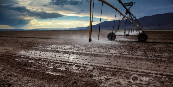 The source of Cuatro Ciénegas' water deficit is groundwater irrigation from grain farms in Ocampo, about 50 kilometers north (31 miles) of Cuatro Ciénegas, and from alfalfa and dairy production in the south Hundido Valley, about 45 kilometers (28 miles) southwest. Here, a center pivot sprinkler irrigates Hundido Valley fields.