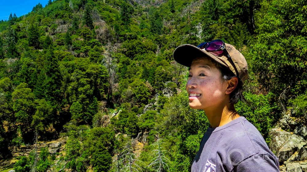 Beverly Bulaon entomologist US Forest Service Sierra forests California drought