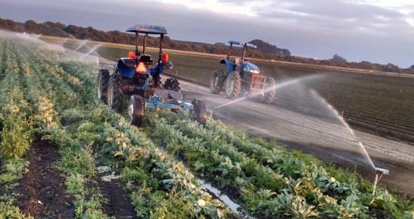 California Santa Cruz County Watsonville cauliflower irrigation farming tractor sprinkler field groundwater circle of blue