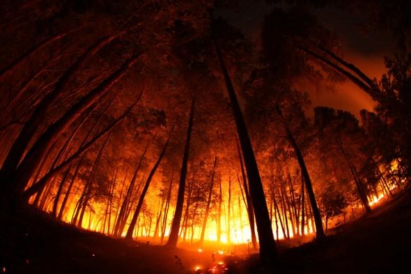 California drought wildfire prescribed burn Butler Creek Klamath Mountains