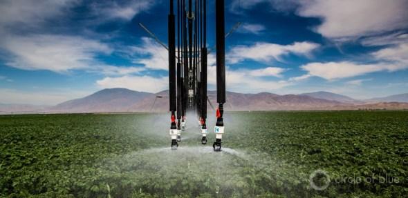 California Central Valley center pivot irrigation Circle of Blue Carl Ganter