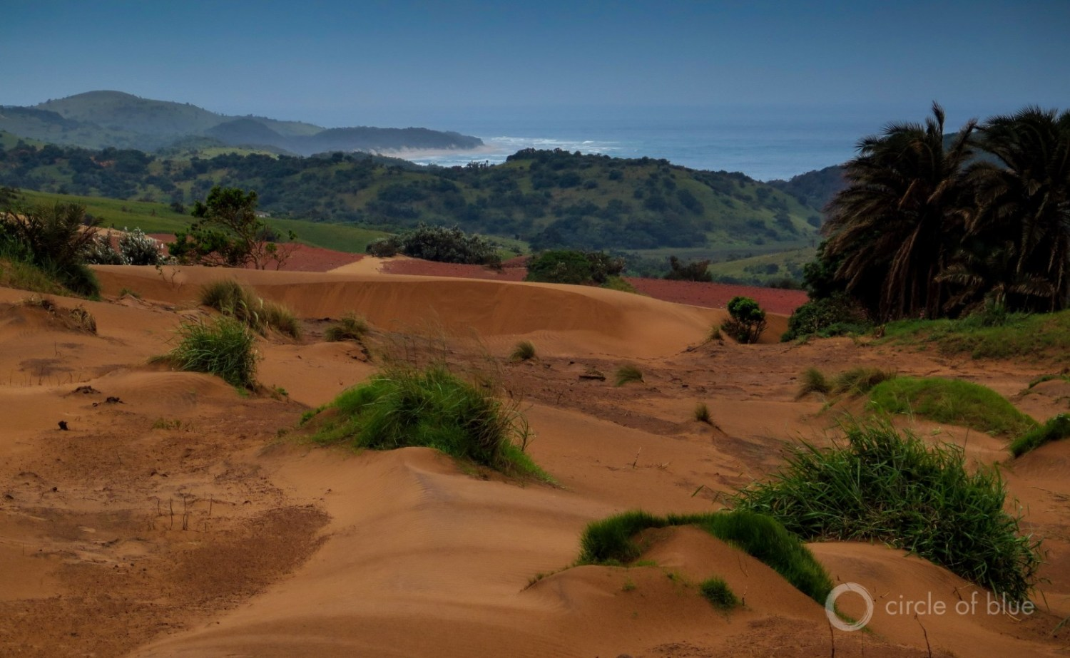 Mineral Commodities Ltd., an Australian developer, proposes to take control of 2,867 hectares of Wild Coast beach and dunes (nearly 7,100 acres) to produce 425,000 metric tons of processed titanium sands annually. Photo © Keith Schneider / Circle of Blue