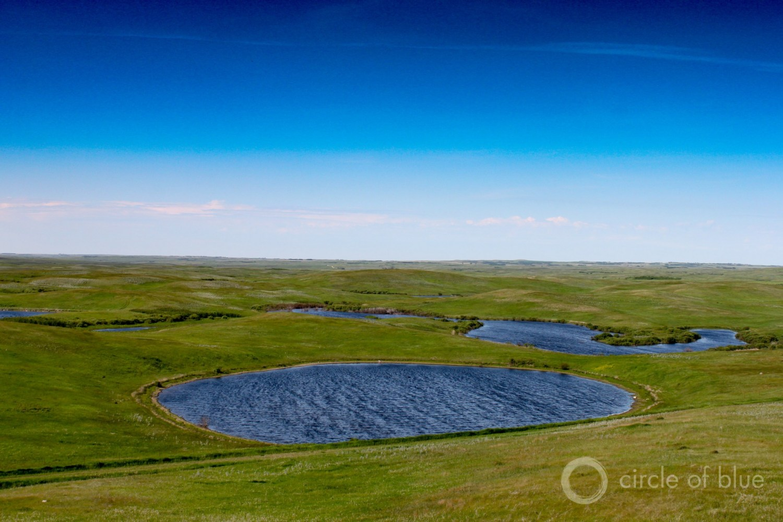Photo © Codi Kozacek / Circle of Blue
