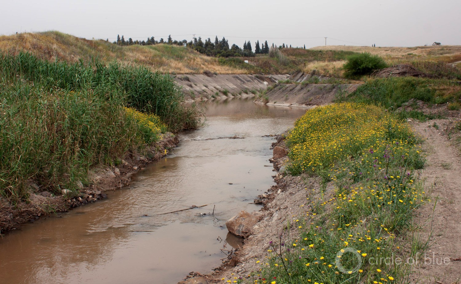 The Jordan River downstream of Lake Kinneret resembles a drainage ditch. Photo © Brett Walton / Circle of Blue